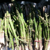 The Asparagus Rush