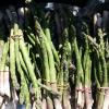 The Asparagus Rush