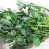 Leafy Green Celery