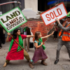 Action on Land Grabs