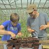 Food Growing Skills