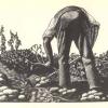 Land event – 5 April
