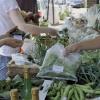 People's Food Fair