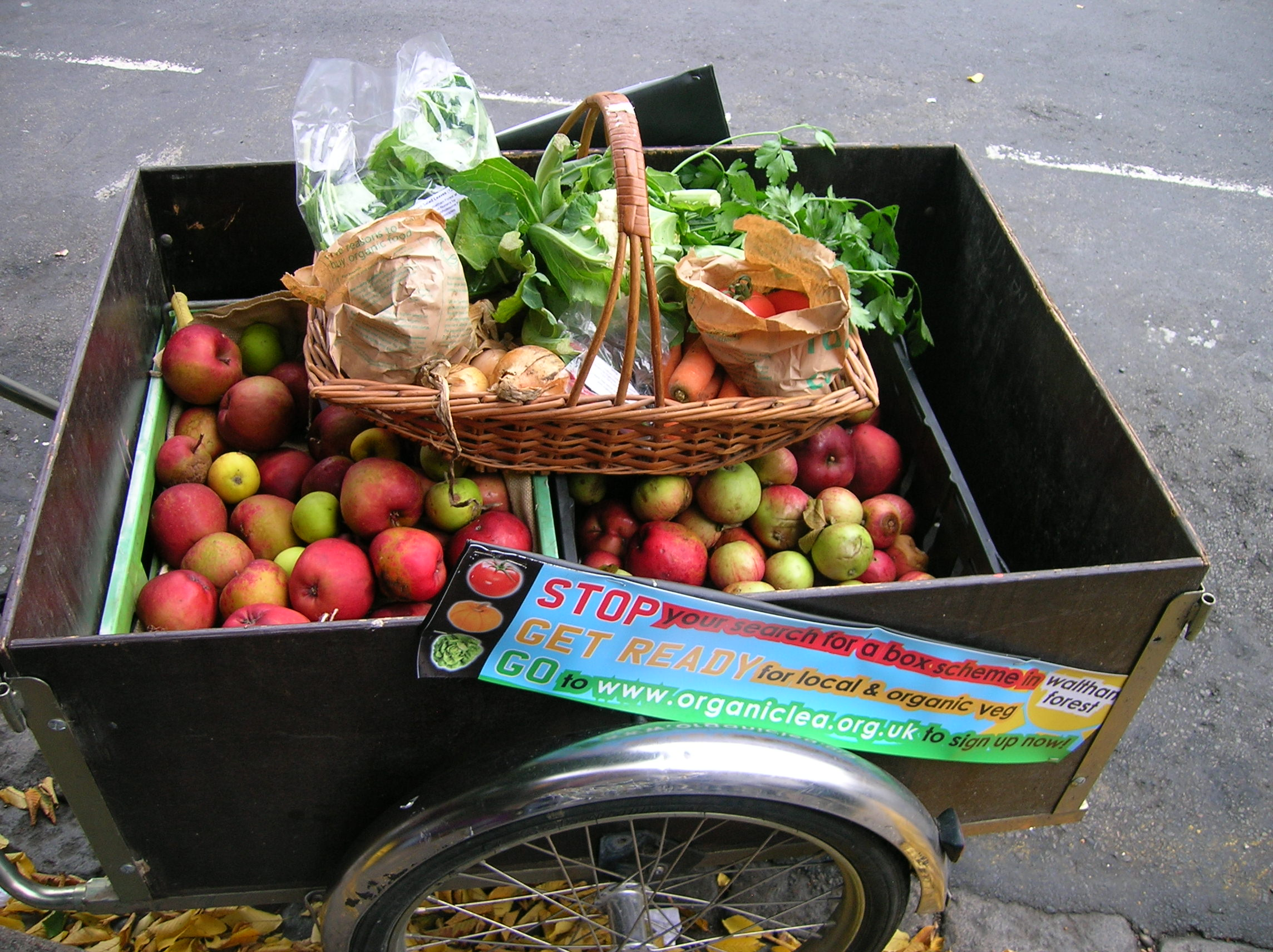 bike trailer and example standard veg bag