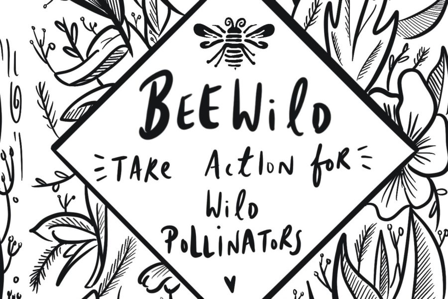 Our first year of Bee Wild activity - OrganicLea - A workers