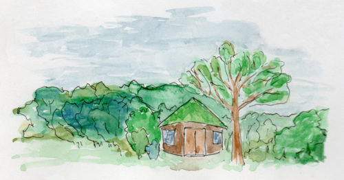 An illustration of our Woodland Classroom